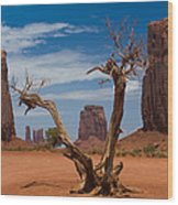 Dead Wood In Monument Valley Wood Print