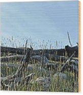 Deadfall And Grasses And Brushed Blue Skies Wood Print