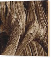 Deadwood Wood Print