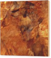 Death In Autumn Wood Print