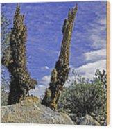 Death Of A Cactus Wood Print