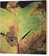 Death Of A Leaf Wood Print
