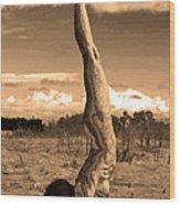 Death Of A Yogi Wood Print