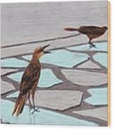 Death Valley Birds Wood Print by Anastasiya Malakhova