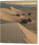 Death Valley Mesquite Flat Sand Dunes Img 0177 Wood Print