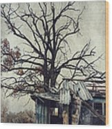 Decay Barn Wood Print