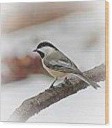 December Chickadee Wood Print