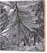 December Freeze  Wood Print
