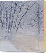 December Riverscape Wood Print