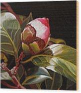 December Rose Wood Print