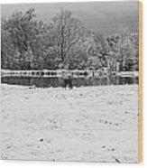 December Snow 006 B-w Wood Print