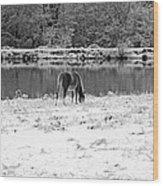 December Snow 007 B-w Wood Print
