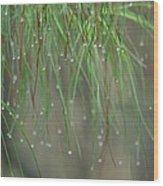 December's Green Wood Print