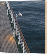 Deck Sea Wood Print