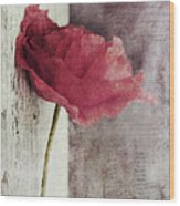 Decor Poppy Wood Print by Priska Wettstein