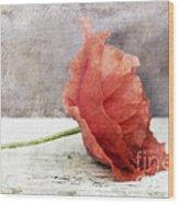 Decor Poppy Red Wood Print