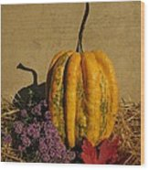 Decorative Gourd  Wood Print