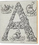 Decorative Letter Type A 1650 Wood Print