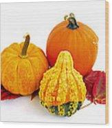 Decorative Pumpkins Wood Print