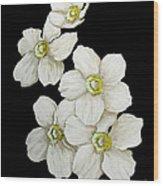 Decorative White Floral Flowers Art Original Chic Painting Madart Studios Wood Print