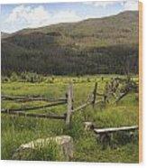 Decrepit Fence Wood Print