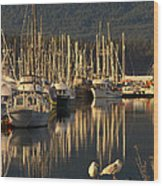 Deep Bay Wood Print by Randy Hall