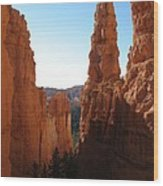 Deep Down - Bryce Canyon Wood Print