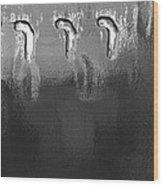 Deep Freeze Wood Print by Lena Wilhite