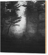 Deep In The Dark Woods Wood Print