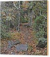 Deep In The Woods Wood Print by Susan Leggett