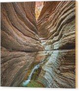 Deep Inside Wood Print