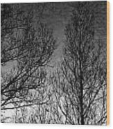Deep Sky Wood Print