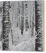 Deep Snow In The Forest Wood Print