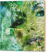 Deep Woods Wanderings Wood Print
