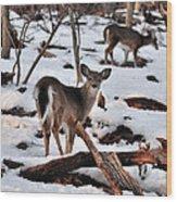 Deer And Snow Wood Print