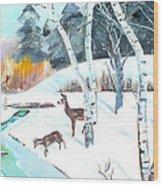 Deer Creek In Winter Wood Print