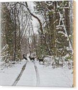 Deer Crossing Wood Print
