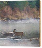 Deer Crossing Stream Panoramic Wood Print