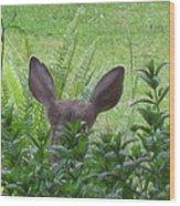 Deer Ear In A Mint Patch Wood Print