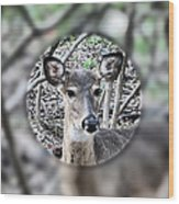 Deer Hunter's View Wood Print