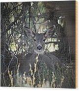 Deer II Wood Print