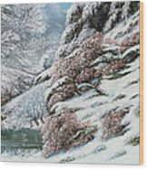 Deer In A Snowy Landscape Wood Print