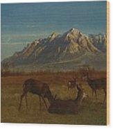 Deer In Mountain Home Wood Print