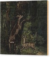 Deer In The Forest Wood Print