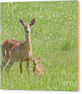 Deer Me Wood Print