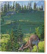 Deer Mountain Wood Print