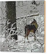Deer On Snowy Trail Wood Print
