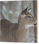 Deer Profile Wood Print