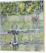 Deer Scene Wood Print