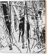 Deer Shadow Wood Print